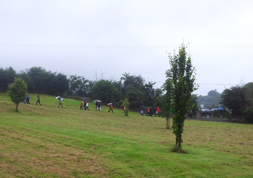 People walking from  St Moling's well to the graveyard