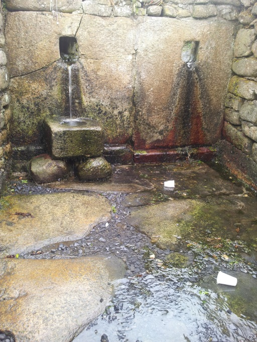 The Holy well at St Mullins
