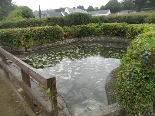 Pool of water at St Molings Well