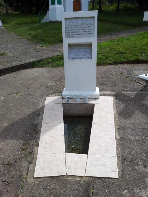 St Declan's Well, Toor