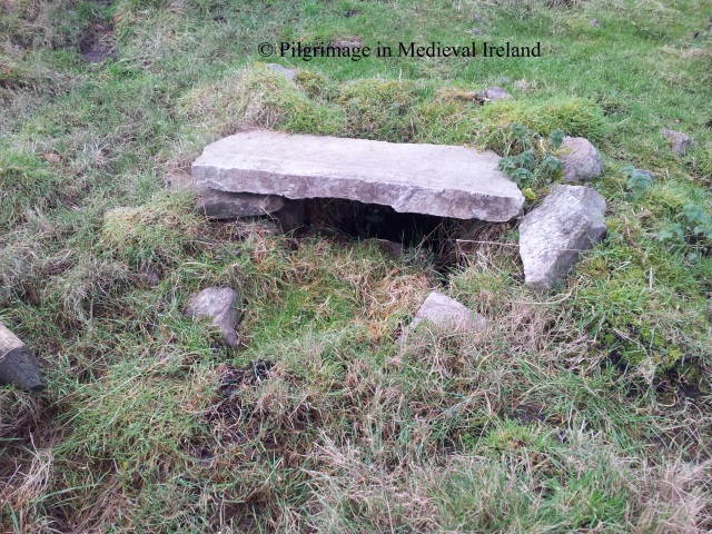 St Nicholas's holy well
