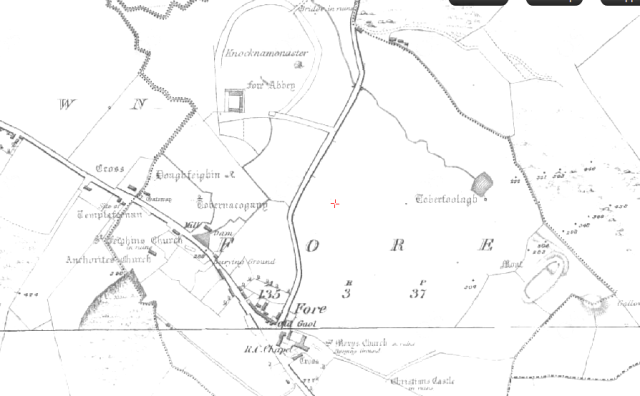 First edition Ordnance Survey map  of Fore