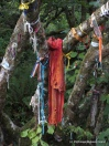 Rags and ribbons and cords tied