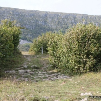 Path leading to St Mac Duagh's Hermitage