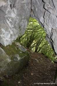 View of faceing out of St Mac Duagh's Cave