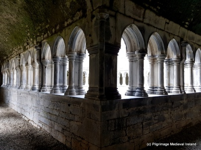 Cloister at Askeaton Friary.