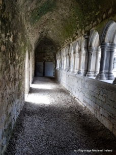 Covered walkway of cloister at Askeaton Friary.