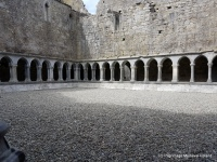 Rectangular area surrounded by cloister at Askeaton Friary.