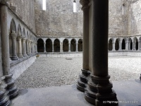 Rectangular area surrounded by cloister at Askeaton Friary