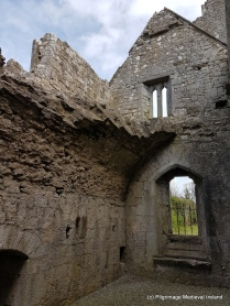 Remains of barrel vaulted ceiling at Askeaton Friary.