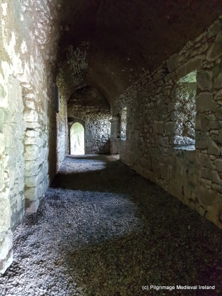 Ground floor of east range at Askeaton Friary.