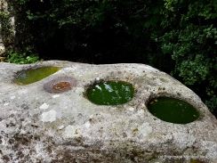 Bullaun basins on stone at Clonmore