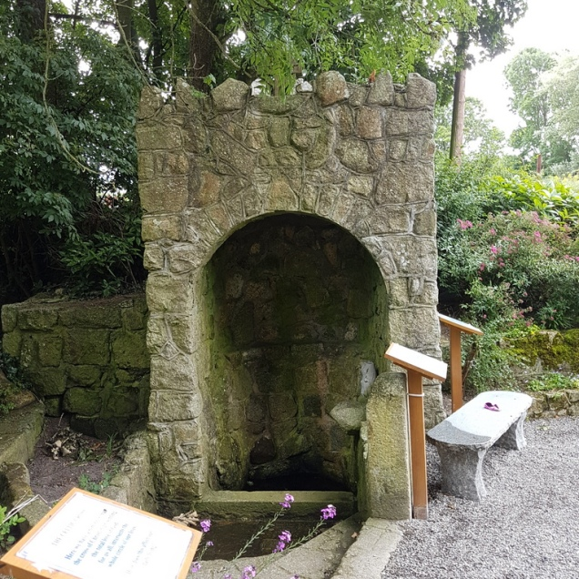 St Mogue's Well Clonmore