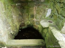 Interior of St Mogue's holy well Clonmore