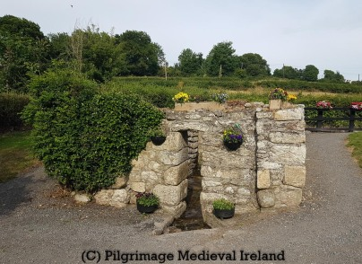 St Moling's Holy Well Co Carlow