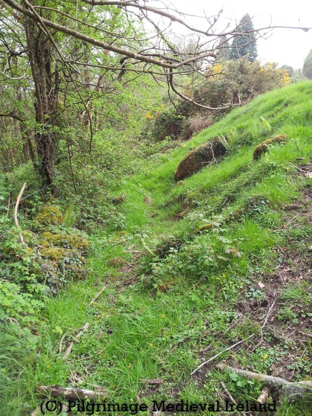 Remains of the medieval millrace at St Mullen's Co Carlow